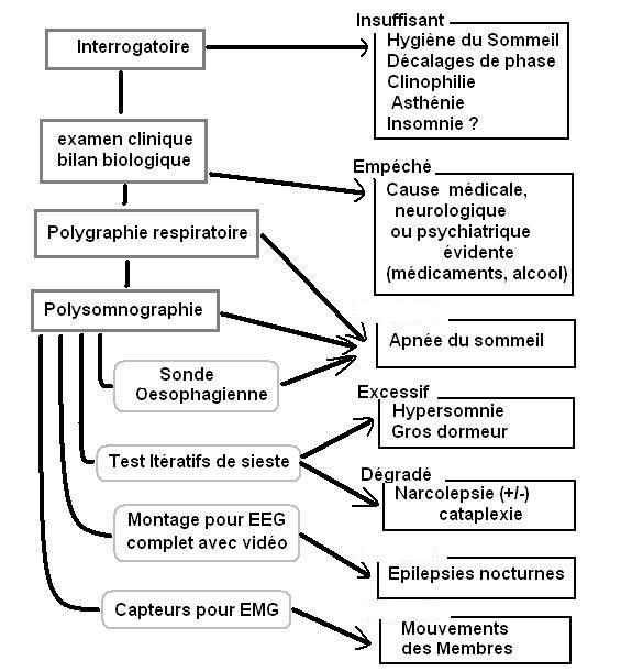 Sommeil et médecine générale -